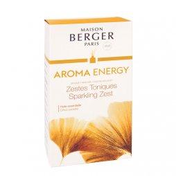 Berger BQT Mikado Aroma Energy